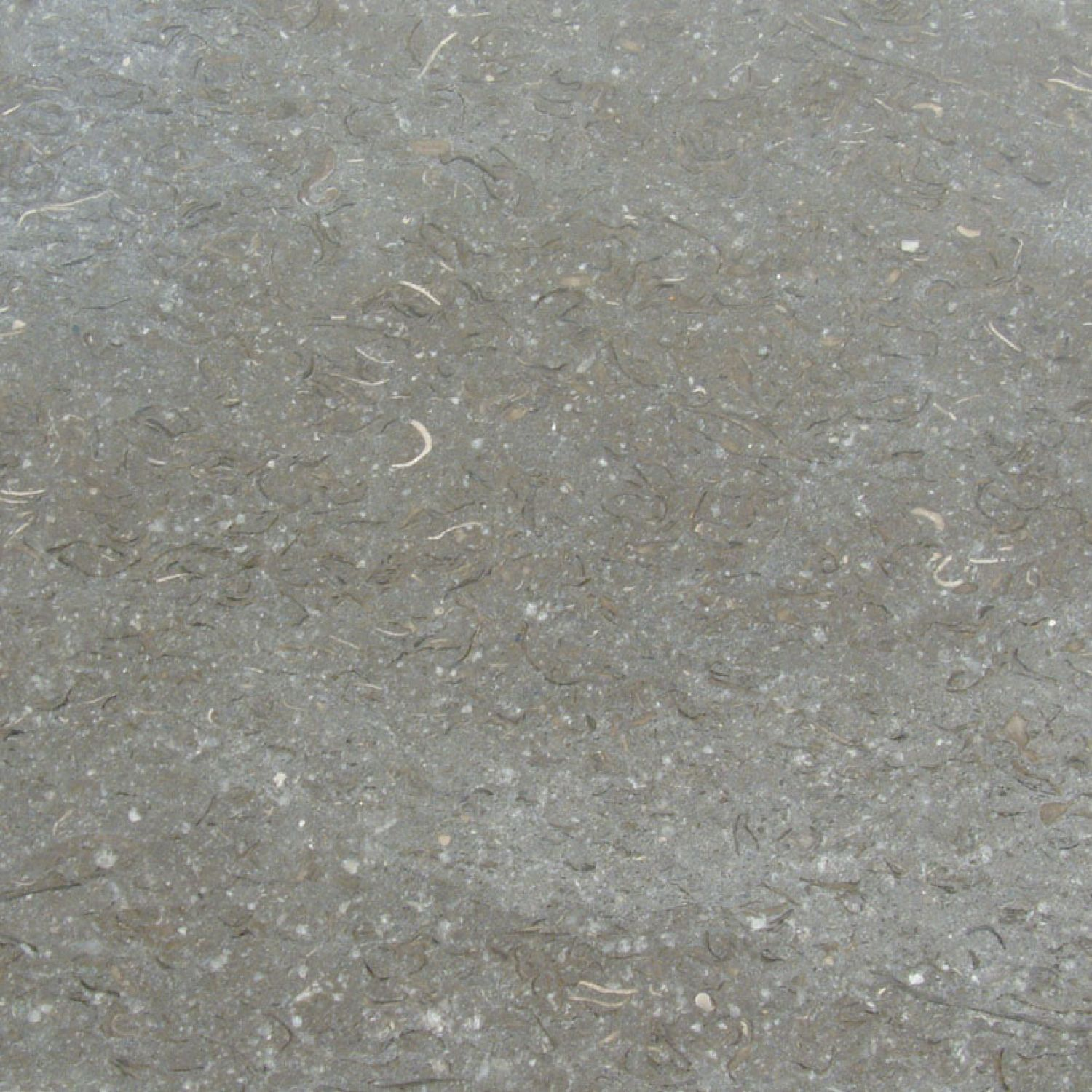 Granite Gris : Padstone tile range natural stone tiles